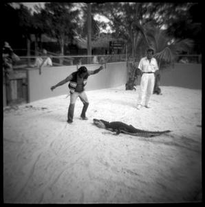 Aligator Wrestler at the Miccosukee Indian Village, The Everglades, FL