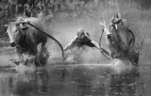 © Yong Sheng Zheng, China. Finalist, Sport, Professional Competition. 2014 Sony World Photography Awards