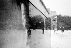Winter Reflected