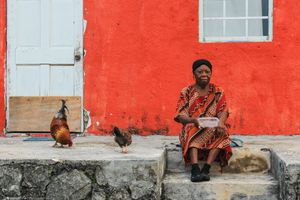 The Haitian Woman