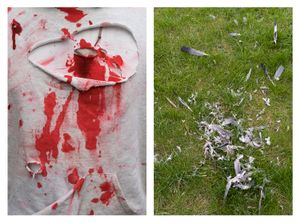 Bloody shirt & Plumes in grass