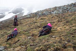 Women from Karang search together for yartsa gunbu. Upper Dolpo, Nepal, June 2017.