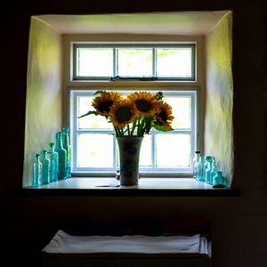 SUNFLOWERS IN A WINDOW