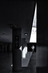 Passer in the light