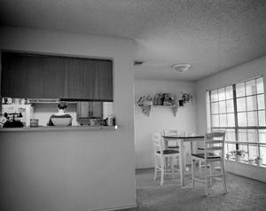 Kitchen Observation