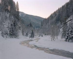 Targului River, proposed location for Beaver reintroduction programme.