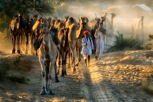 flavour of rajasthan