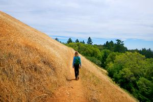 Hiking With Jeanne 2, Matt Davis Trail