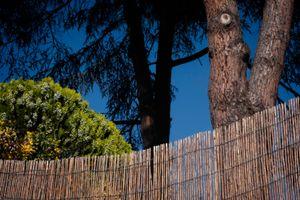 La Terraza 2. Landscape