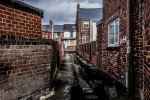 Rat alley