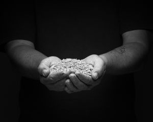 Dried soil and hands