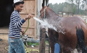 Washing Duke