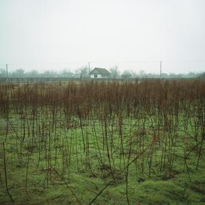 Home in Letea