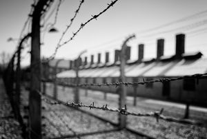The perimeter fence, Auschwitz-Birkenau concentration camp, Oświęcim, Poland