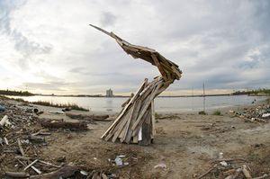 Wood Debris Spiral © Jeremy Underwood