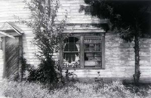 Side of Country Store with Palmist Sign in Window, Havana, Alabama, 1964