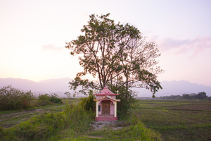 A small structure has been made to house an ancestor who protects the fields around Hibongpokpi village.