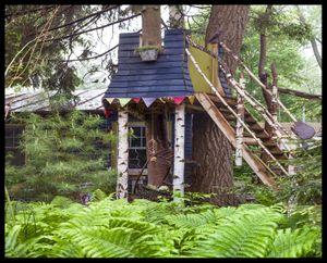 Sarha's Tree house