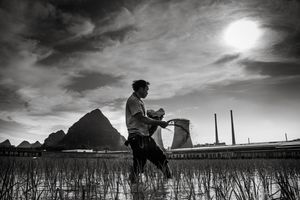 On the back, a coal power plant supplies the surrounding cities. Soon, these rice fields will no longer be there. Local people say the government intends to move people out of this area to bigger cities.Jingxi surroundings, Guangxi Province, China.