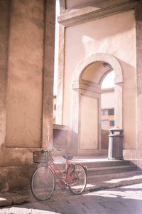 Basking Bicycle