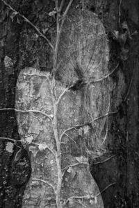 Arbor Essence VIII