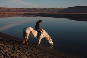 Land, water, horse
