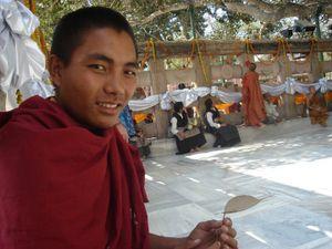 Nepalese Monk gifts me his Bodhi Tree leaf , Bodhgaya , India