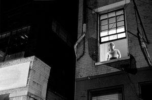 The View © Jason Tannen