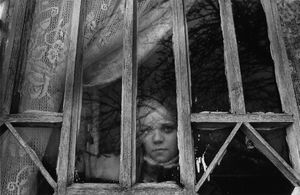 Contaminated lands, Kozli (Belarus) © Pierpaolo Mittica