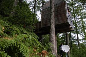 Outlandia - artist treehouse studio