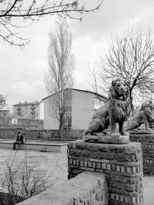 Lions of Kars.