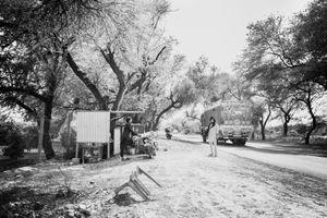 Bishnoi - Story of transition - 2