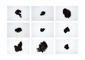 Plastic bags - Black (a)