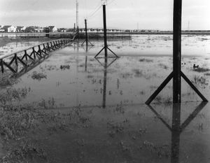 Tidal Flood, Foster City, CA
