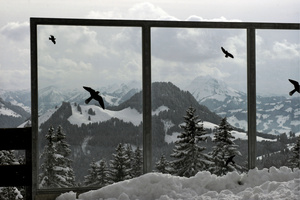 Wintergarten in mountain setting;