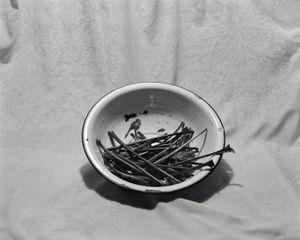 Beet Stems At Night © Allison Barnes