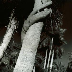 Embracing Fate, Fort Lauderdale, FL, 2009                                                                    © Kimberly Schneider