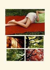 N°61 - Passage - Vert, le rouge - 2008.