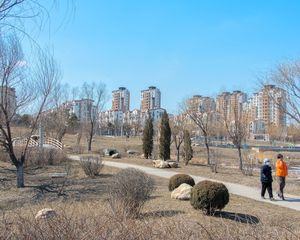 Landscaping & residential blocks, Shenyang