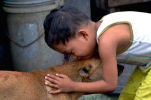Boy's best friend Manila
