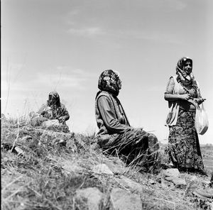 on Kurdish fields © Gigi Roccati