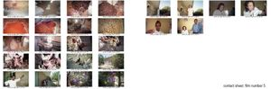 The World of Sight. Contact sheet nº15- KISHMARIAN TSEGAY. From the project: Camera. Blind. Project. ©Ivo+Ana