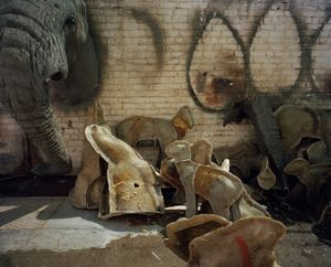 spare parts, taxidermists studio, south africa-from the series 'hunters'-David Chancellor