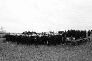 Amish Crowd