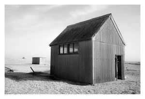 Dungeness #13