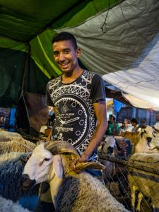 Happy young sheep seller