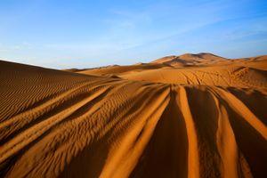 Saharan Trails