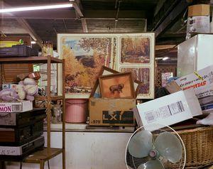 Untitled Thrift, 2006 (Bull)