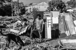 SURVIVORS OF BRAZIL