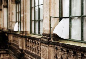Open Windows   © Seán Duggan